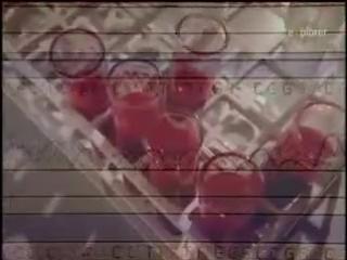 Загадки ДНК: Поиски Адама | DNA Mysteries: The Search For Adam (2005)