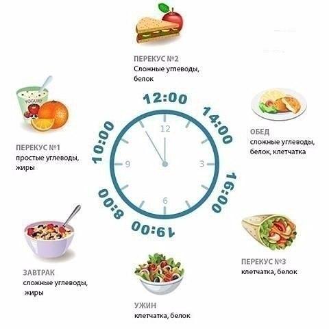 Диета завтрак обед полдник ужин время