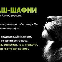 Гамзаев Арсен