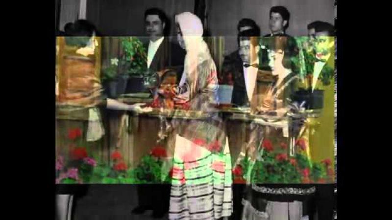 Milion Milion Gol e Sorkh میلیون،میلیون گل سرخ Песня поется иранским исполнителем в эмиграции