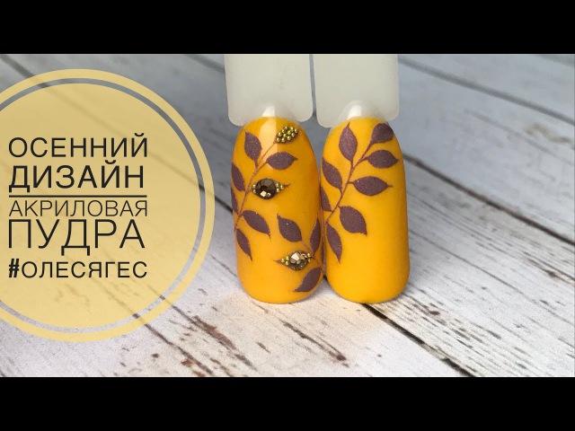 Осенний БЫСТРЫЙ дизайн ногтей ❤️ Гель лак гель краска акриловый пудра ❤️ Patri