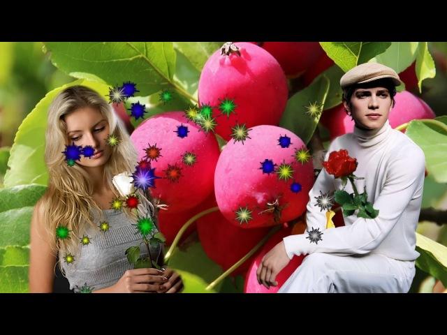 Я не скажу из кф Райские яблочки Песня И Тумановой Кавер спела Г Погорельская