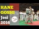Hane Goshi - Stage di Jesi 2016 [JUDO]