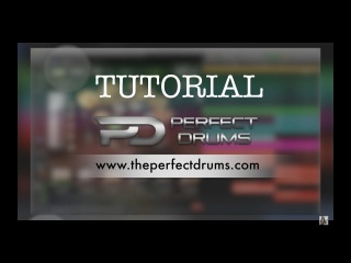Naughty Seal Audio - Perfect Drums || MIXING TUTORIAL