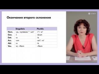 2.1. Второе склонение мужской род. Латинский язык.