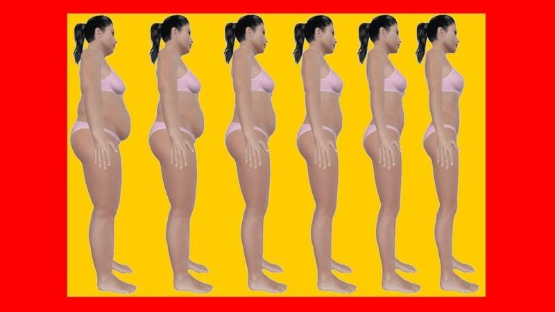 Como Perder a Gordura e Ganhar Massa Magra ❓