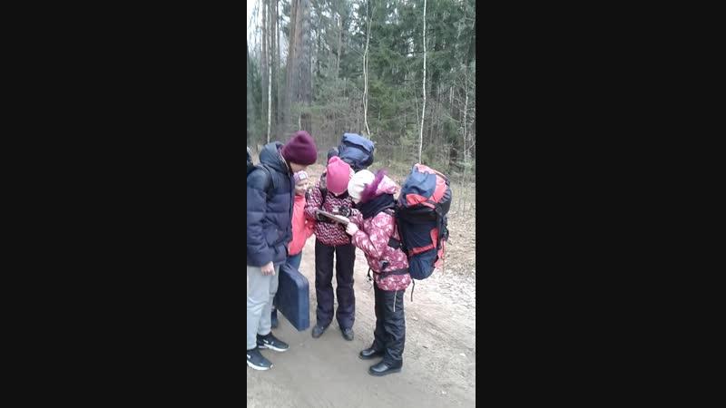 Ориентируемся в лесу. Первенство г. Чебоксары Ноябрьская звездочка - 2018