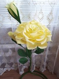 Цветкова Лилия