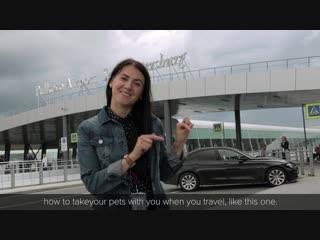 Pulkovo VLOG S01 E03 - Как пройти предполетный досмотр в аэропорту Пулково!