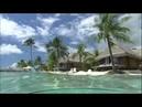 Enya - Wild Child Caribbean Blue [Tropical HD]