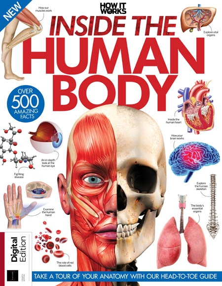 How It Works - Inside the Human Body Fourth Edition
