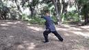 Shaolin Da Hong Quan 大洪拳 - Part 02