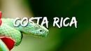 COSTA RICA IN 4K 60fps HDR ULTRA HD