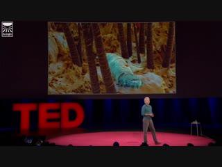 TED talks RUS x Луи Шварцберг Скрытые чудеса природного мира  Louie Schwartzberg Hidden miracles of the natural world