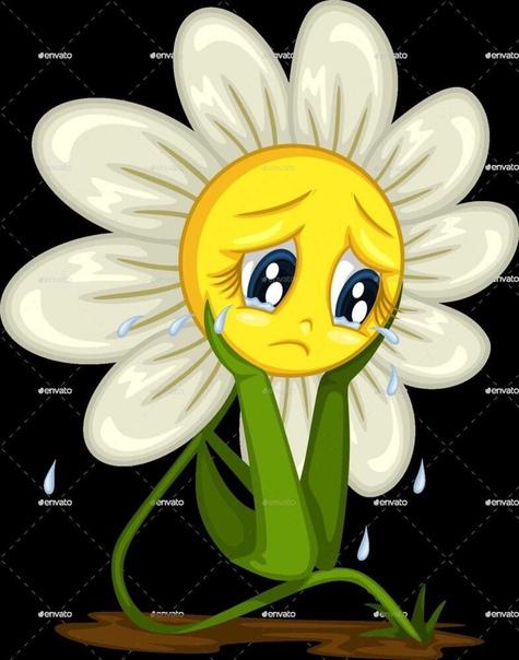 или картинка спящего цветка сестёр врага