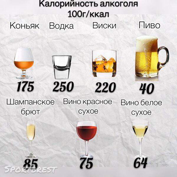 Алкоголь И Диета Несовместимы Почему