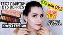 БУЭ или ОУ Е Тест палетки BYS Berries Свотчи макияжи первые впечатления