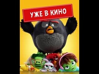 Angry birds 2 в кино - уже в кино!