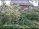 В поселке Суворовский дерево упало на дом