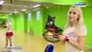 В Перми прошла массовая тренировка на пружинных ботинках