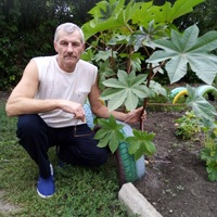 Николай Донецкий