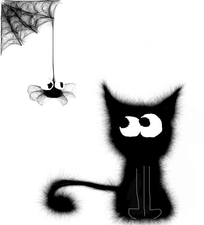 Котенок и паук картинка