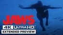 Jaws | Opening Shark Attack in 4K | Own it 6 2 on 4K UHD