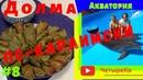 Долма (Сарма) по Караимски в томатном соке с мятой. Ялта Акватория. Крымская (Караимская) кухня