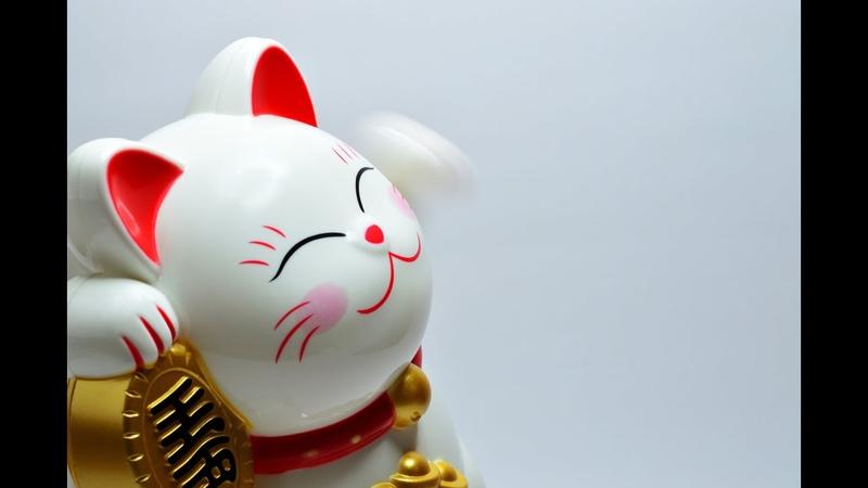🐉 Прогноз на Китайский Новый Год 2020 для каждого Знака Зодиака и🐈 СФИНКСОВ 13 26 января