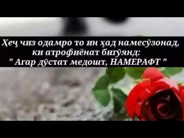 🎵🎶😭😭МАН ОШИКИ СИДОКАТ ТУ♥️ ОШИКИ ♥️ХИЁНАТ ХАРДУ БИ ИН ДУ РАНГИМ БАДЧУРИ КАРДИМ ОДАТ😭😭🌹😥