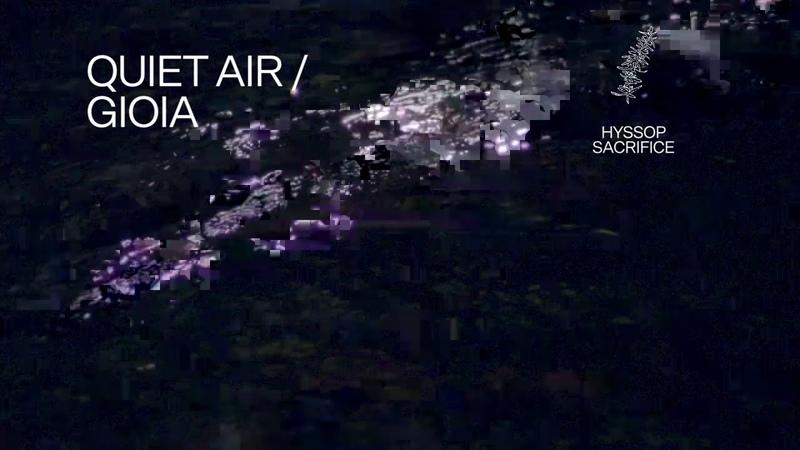 Fleet Foxes Quiet Air Gioia Lyric Video