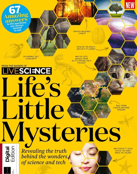 2019-09-11 Life's Little Mysteries