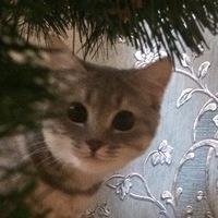 Евгения Водонаева