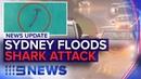News Update: East coast rain, Shark attacks surfer | Nine News Australia