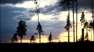 Мировое Кочевье: Фильм 19-й (Sweden 2019)