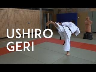 USHIRO GERI - karate back kick - TEAM KI