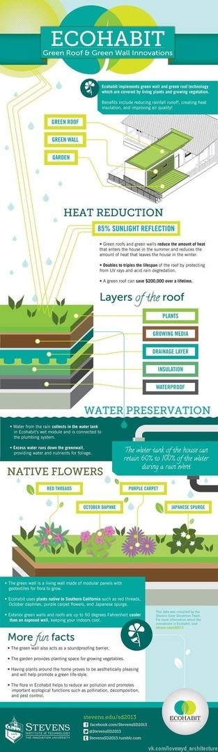 Инфографики   GREEN ROOF