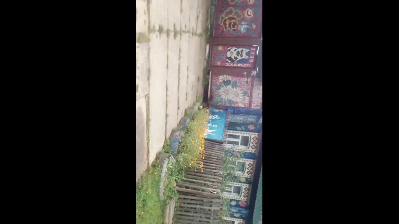 Невьянск дом из крышек идём по грибы