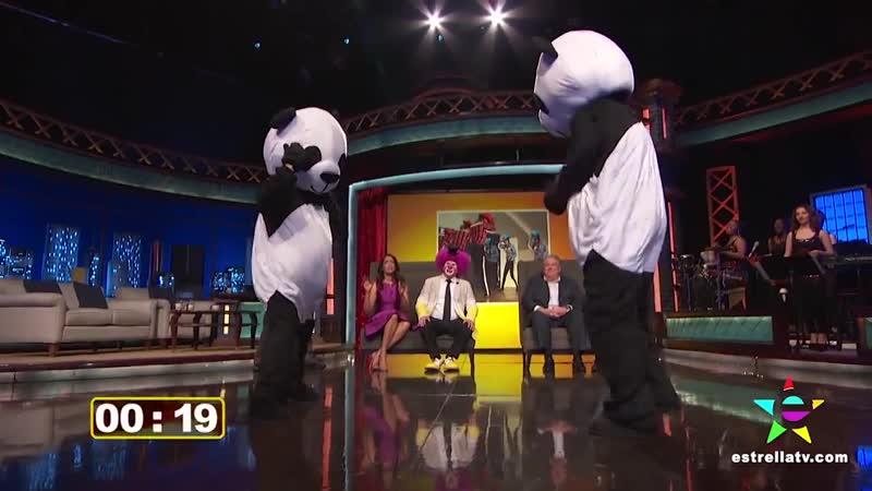 13.02.2015 - promo The devil's violinist / TV / Noches Con Platanito pandas game