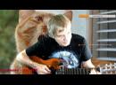 Песни под гитару Бессмертный Высоцкий. Вокруг смеха....TB №230