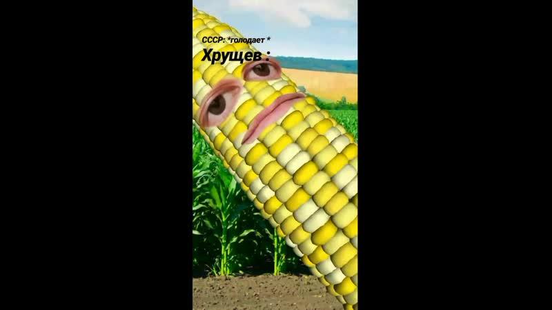 Хрущев Кукурузин