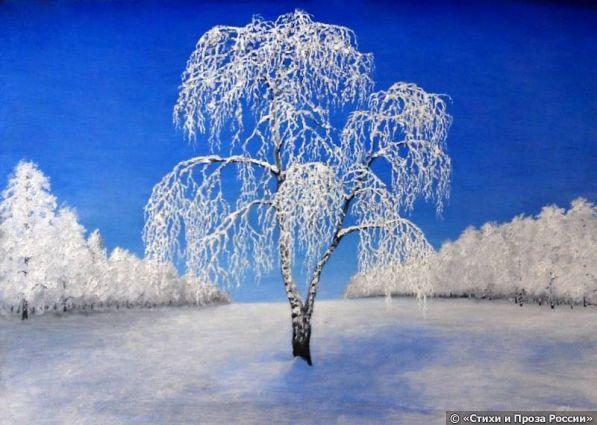 Продрогшая принцесса Вуаль из инея и снежную накидкумороз задиристый березе подарил.Рассвет застенчивый лучами озарил,спросив у солнышка предпраздничную скидку.И вот стоит моя красавица березав