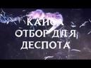 Каиса Отбор для деспота Буктрейлер Лея Кейн