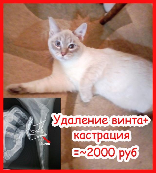 i3-Mltw4vDI.jpg