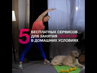 ТОП-5 сервисов для занятия спортом дома
