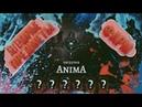Правильный фарм легендарных предметов Anima ARPG