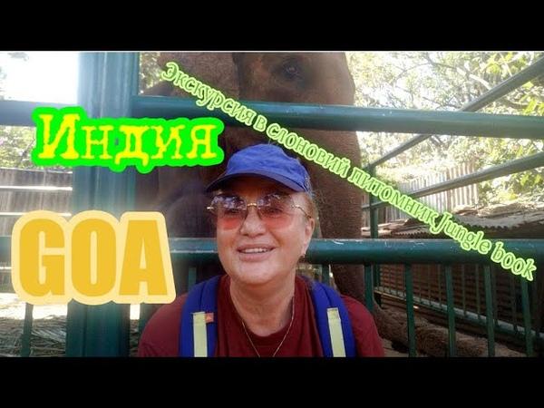 Экскурсия в слоновий питомник Jungle book