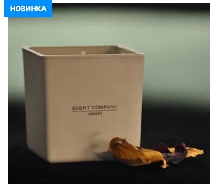 Ароматизатор диффузор с палочками купить Краснодар