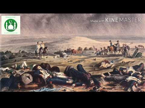 Битва при Карансебеше Битва выигранная мусульманами без единого выстрела