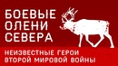 Рогатые Батальоны Севера. 10.000 Оленей, сражавшихся в Великой Отечественной Войне
